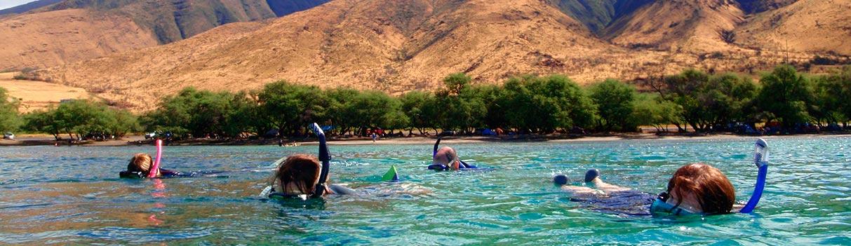 Shore Based Snorkeling